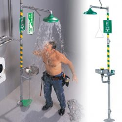 Combination Shower and Eyewash